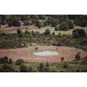 """""""Sad Hill"""" ó """"Colina Triste"""" en Parque Natural de los Sabinares del Arlanza"""